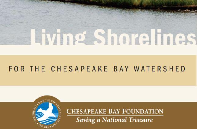 living-shoreline-brochure