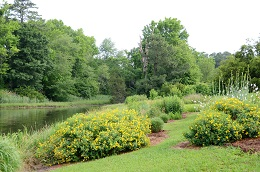Shoreline Landscaping Presentation: Friday, April 28 at 2:00 PM in Heathsville