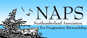 Northumberland Association for Progressive Stewardship