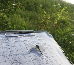 BioBlitz on the National Wildlife Refuge—Sept. 29