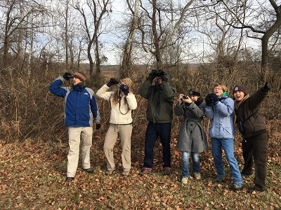 2018 Christmas Bird Count in Rappahannock River Valley NWR segment of George Washington's Birthplace CBC Circle