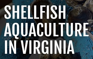 How to Start a Shellfish Aquaculture Operation in Virginia