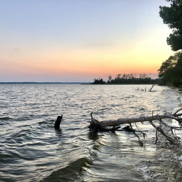 Pursuing Scenic River Designation for the Lower Rappahannock River