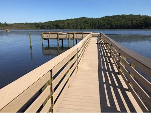 Educational Videos Available on the Rappahannock Wildlife Refuge Friends Website