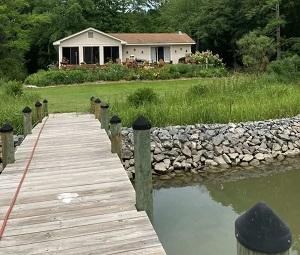 Virginia Living Shorelines Poised to Flourish under $1 Million Grant